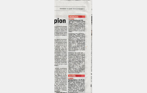 Coupe Adulte Final : Article de Presse